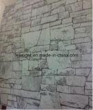 Acciaio rivestito galvanizzato preverniciato di Coil/PPGI/Color