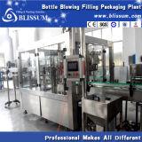 Ligne de machine de remplissage de l'eau carbonatée de qualité