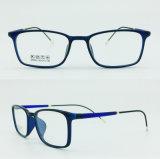 공장 인기 상품 최고 가벼운 절반 플라스틱 강철 형식 새로운 디자인 광학적인 Eyewear 프레임