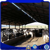 Große breite Fertigmetallgebäude für Vieh-Bauernhof-Haus