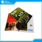 Stampa su ordinazione professionale dello scomparto di colore completo della Cina