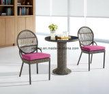 Jeu de café extérieur meilleur marché UV-Résistant de meubles de jardin de Poolside de Sythetic avec la présidence et le Tableau empilables (YT833)