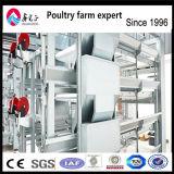 Cage automatique de poulet de couche des meilleurs prix de l'Afrique à vendre