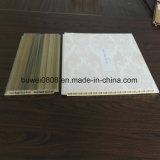 De Materiële Houten Plastic Samengestelde Comités van het Plafond van de Muur WPC