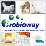 Hoher Aktivitäts-Katzen Probiotics Nahrungsmittelbestandteile Softgel gesunder Gi
