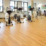 Sedi della riunione di legno che pavimentano per Gyms, stanze di svago del reticolo di peso