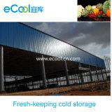 Grande armazenamento frio de baixa temperatura de capacidade elevada do tamanho para o mantimento fresco dos vegetais e das frutas