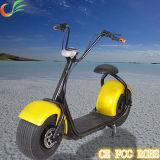 개인적인 수송 싼 전기 기관자전차를 위한 전기 자전거