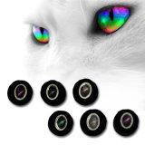 Tremper le plus récent arrêt magnétique d'usine Cat Eye Gel ongles polonais