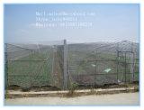 Сеть 100% тени Анти--Насекомого HDPE девственницы для парника земледелия