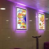 Le stand A4 en gros a illuminé le bâti acrylique, étalage de publicité acrylique