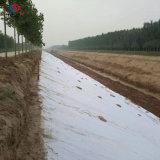 UVStablised Bodendeckel-Gewebe/Feinkohlezaun/Geotextile