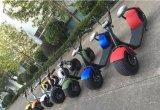 2016熱い販売1000W 60Vのセリウムの公認の電気二重シートの移動性のスクーターの電気スクーター