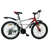 21の速度のSHMTB378 26inch鋼鉄マウンテンバイク