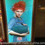 Advertizing LED Light Boxのための衣服Display Window