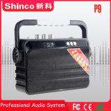 FM Bluetooth를 가진 Shinco 무선 휴대용 스피커