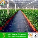 Tecido de paisagem 100 PP Eco-friendly PP