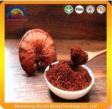 Potencia a granel de Reishi del polvo de la espora de Ganoderma Lucidum de la comida sana