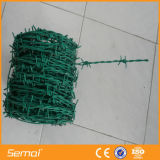熱い販売のためのステンレス鋼の有刺鉄線
