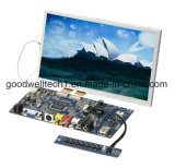 "8 "" LCD Noten-Baugruppe mit VGA, Video 1, Input Video2"