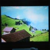 Yi-801 Videospelletje HDMI WiFi van TV LCD van Proyector van het Theater van de Bioskoop van het LEIDENE Huis Beamer van de Projector 2000lumens het Androïde 3D