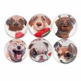 moderne bunte kundenspezifische preiswerte Serien-Glasfertigkeit-Kühlraum-Magnet des Hund3d