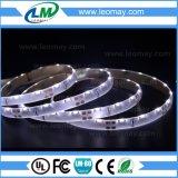 Bordo Non-Impermeabile 335 che emette il nastro caldo bianco freddo di bianco LED dell'indicatore luminoso di striscia del LED