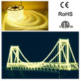 Alta certificación de la tira 5050 8m m ETL de la flexión LED del lumen 5050