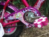 Bici di vendita calde dei capretti di stili di alta qualità nel Sudamerica