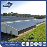 Het Huis van het gevogelte en het Landbouwbedrijf van de Landbouw van het Gevogelte /Poultry in Kenia met de Structuur van het Staal