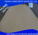Venda imperdível! 6mm Birch Wood Commercial Plywood Preço barato