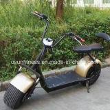 安い都市ココヤシのHarley 1000Wの電気オートバイのスクーターの大人