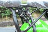 1000W motocicleta eléctrica con 60V/30Ah F/R de suspensión, de 2 asientos