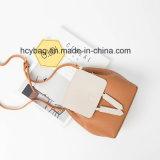 Sacchetto bello di Crossbody di stile, sacchetto dell'unità di elaborazione delle signore di modo, un sacchetto delle sei donne di colore