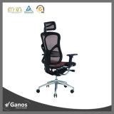 Büro-Stuhl-spezifischer Gebrauch-und Ineinander greifen-Stuhl-Art-Federelement-Stuhl