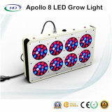 High power 240W LED Grow Light for Grow Tent Used