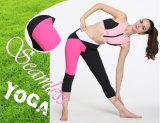 Оптовый розовый и черный способ сексуальное Capris повелительниц 3/4 гетры