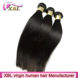 100% virgem Hair 10A Classificação Brasileira de Cabelo humano em bruto