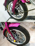 '' Moteur électrique de vélo du frein à disque de bicyclette de 250W Jb-14 E avec du ce