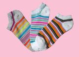 Le donne mettono a nudo i calzini Colourful (DL-WS-52)