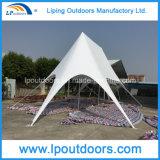 Популярный шатер звезды партии высокого качества