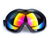 Constructeur en gros professionnel des lunettes à une seule couche de ski