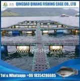 Cage de pisciculture d'aquiculture avec le réseau de PE/Nylon