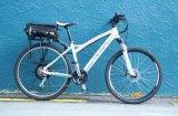 Eje 160rpm de Ebike del mac al motor eléctrico de la bicicleta 520rpm