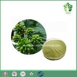 Extracto de planta de 10-Hydroxy Camtotecina de alta qualidade com melhor preço