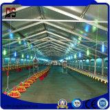 Q345b 물자를 가진 가벼운 유형 닭 농장 강철 구조물