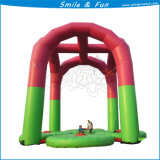 Sosta dell'interno di divertimento di cena grande/esterna del trampolino da vendere il salto dell'ammortizzatore ausiliario