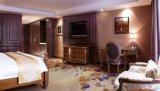 het vijfsterren Unieke Meubilair van de Slaapkamer van het Hotel (NL-SY005)
