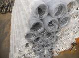 V filtri per pozzi dell'elemento filtrante del collegare/acciaio inossidabile