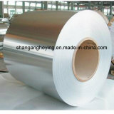 Manufatory 304の台所のための316Lステンレス鋼のコイルの/Ssのコイル